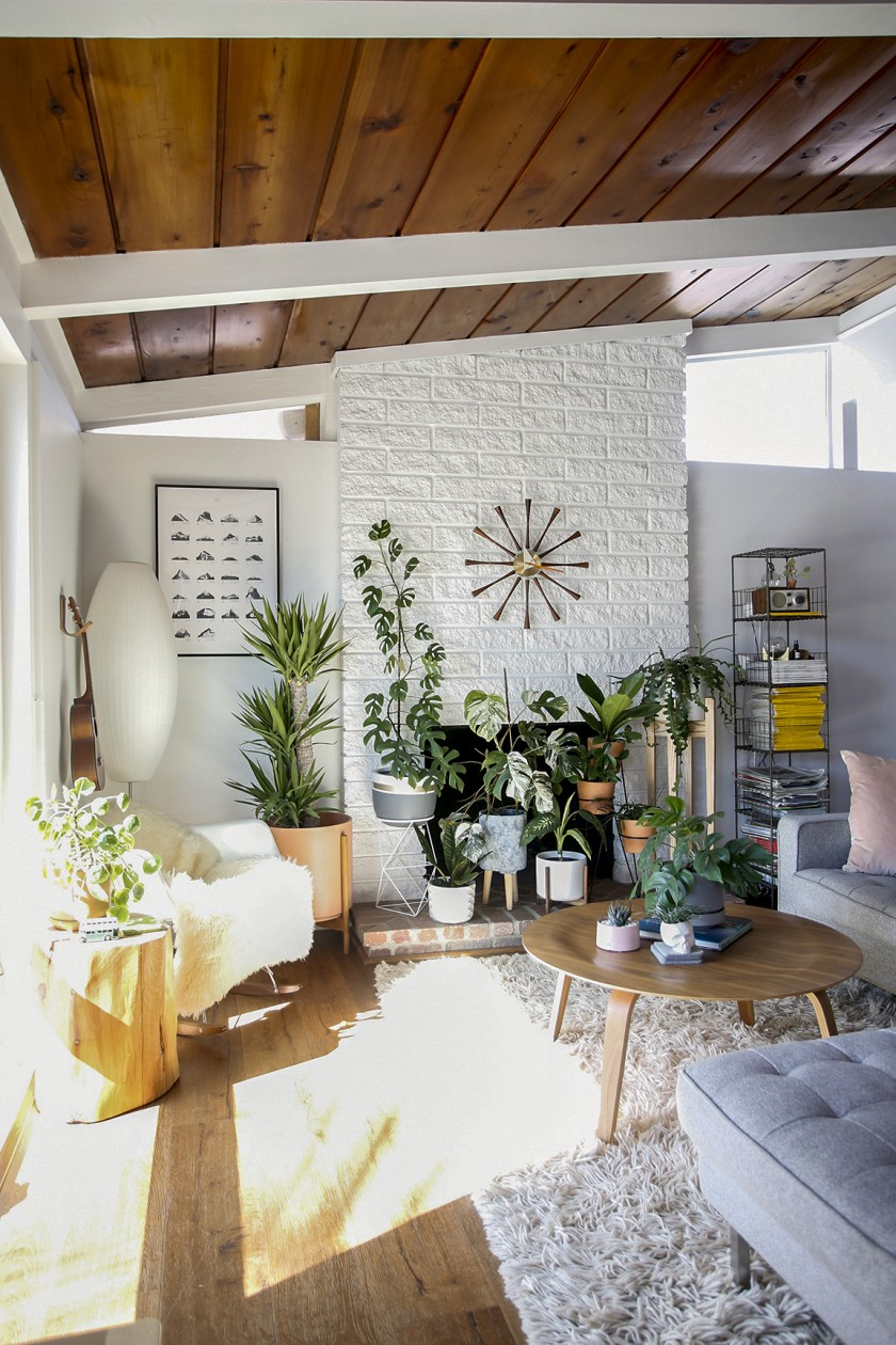 """Light shines through a window in a room filled with greenery in """"Houseplants for All: How to Fill Any Home with Happy Plants"""""""